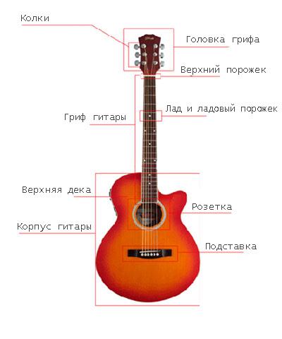 Строение гитары фото